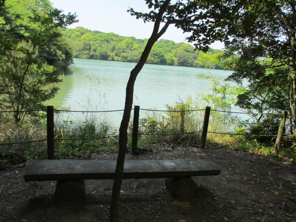 九大の森の間伐材を使ったベンチ