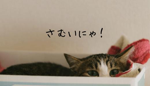 寒がりな猫ちゃんのためのオススメあったかグッズは?