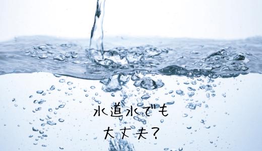 まりもを育てる水は水道水で大丈夫?ミネラルウォーターの方がいいの?