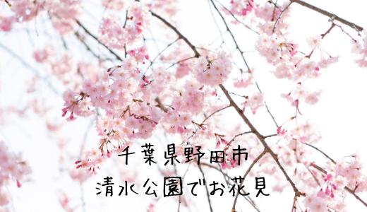 千葉県野田市の清水公園のさくらまつりに屋台はある?お花見しながらバーベキューできる?混雑状況からおすすめのアクセスまで紹介!