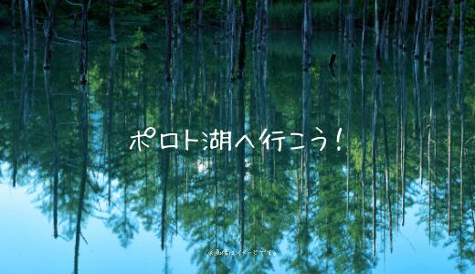 1年中楽しめる!北海道の隠れた観光スポット「ポロト湖」の魅力とは